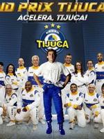 theme-tijuca-2014