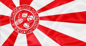 drapeau salgueiro