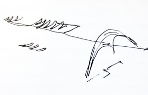 croqui de Oscar Niemeyer sambodrome